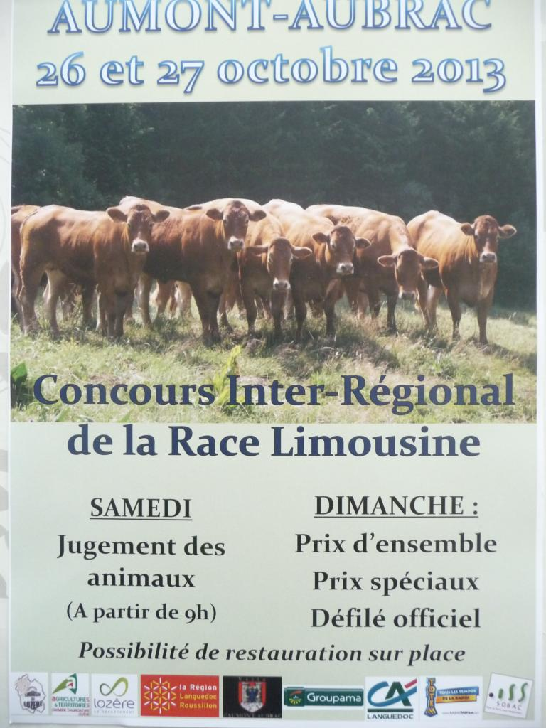 concours inter-régional de la race Limousine